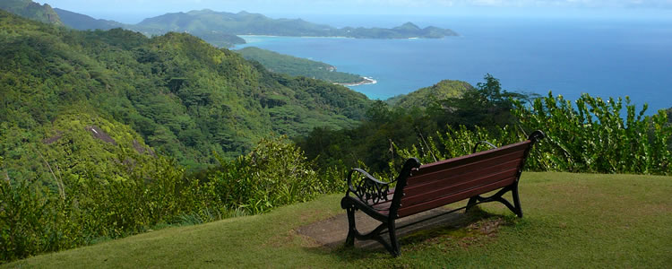 Seychelles, Tea, Plantation, View, Takamaka Bay, Mountain